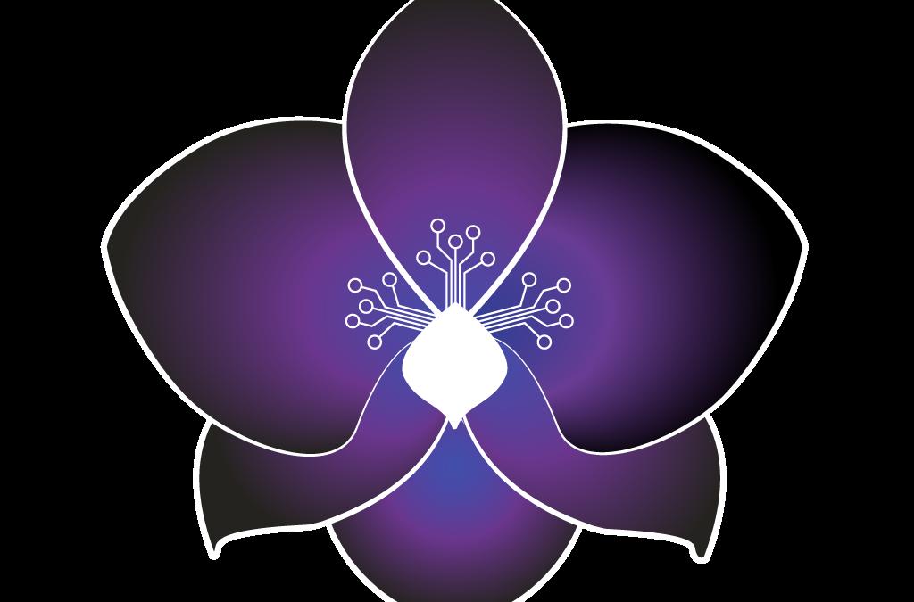 L'Archidea – Logo Design